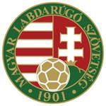 MLSZ-program futball pályái